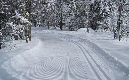 Freshly groomed trails