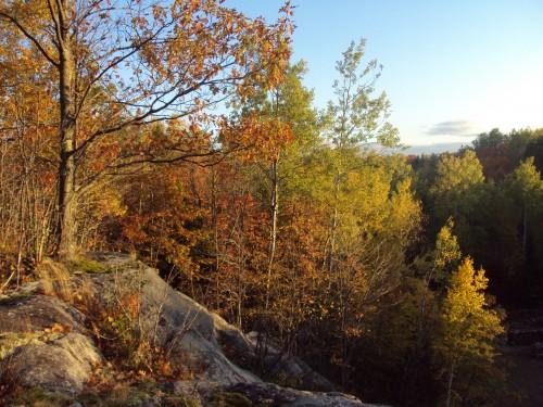 Peak Fall Colors Oct 07, 2009